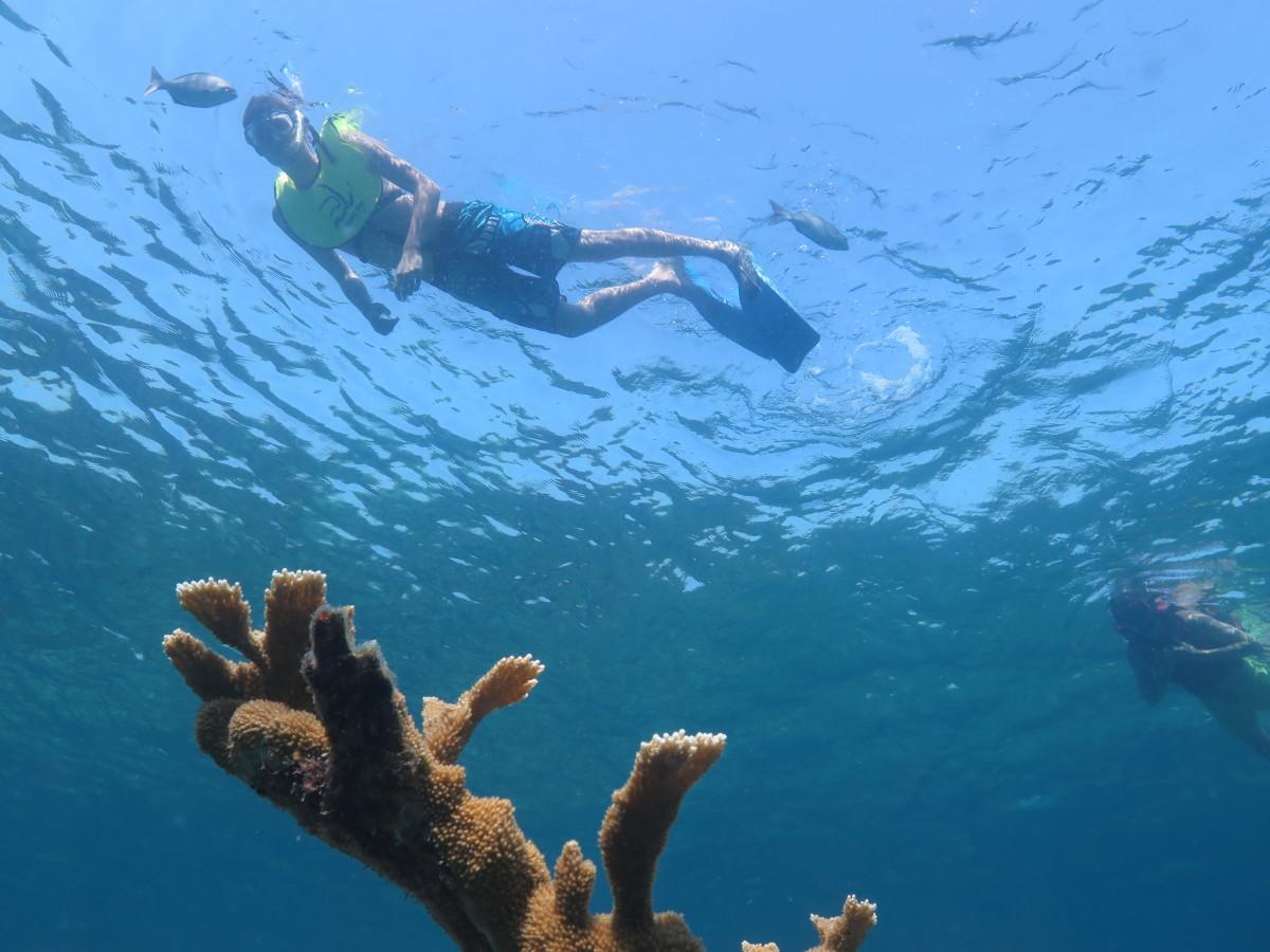 Snorkeling Varadero Tour